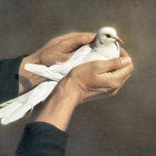 dove-in-hands